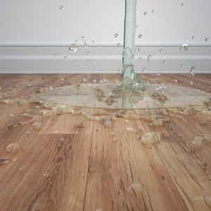 What to Do About Water Damage on Your Hardwood Floors