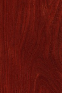 5 Trendy Types of Colors for Hardwood Flooring
