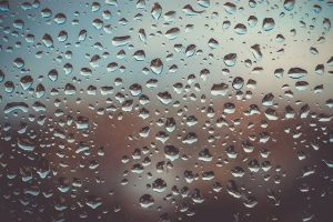How to Measure the Humidity That Can Affect Your Hardwood Flooring